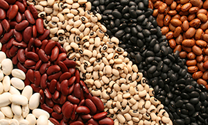Beans: Helps Battle Breast and Colon Cancer
